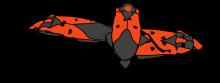 RI bugs